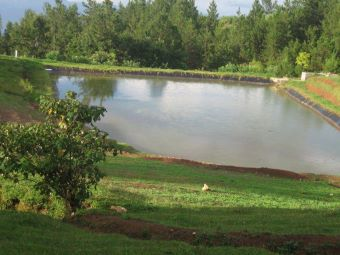 pond at ranch le montcel Kenscoff