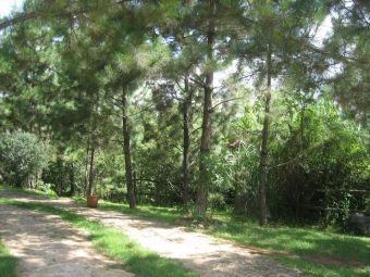 the woods at ranch le montcel in Kenscoff haiti