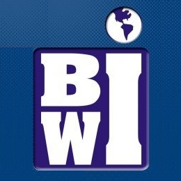 Business Institute of the West Indies (BiWi)