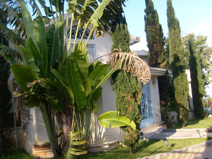 Groupe Immobilier d Haiti