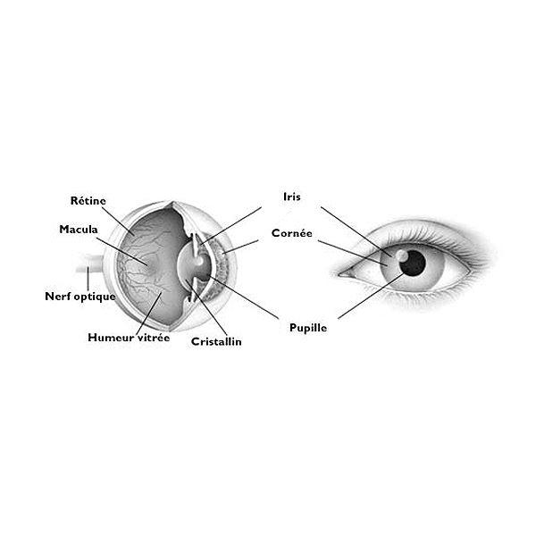 Clinique Ophtalmologique Spécilialisée