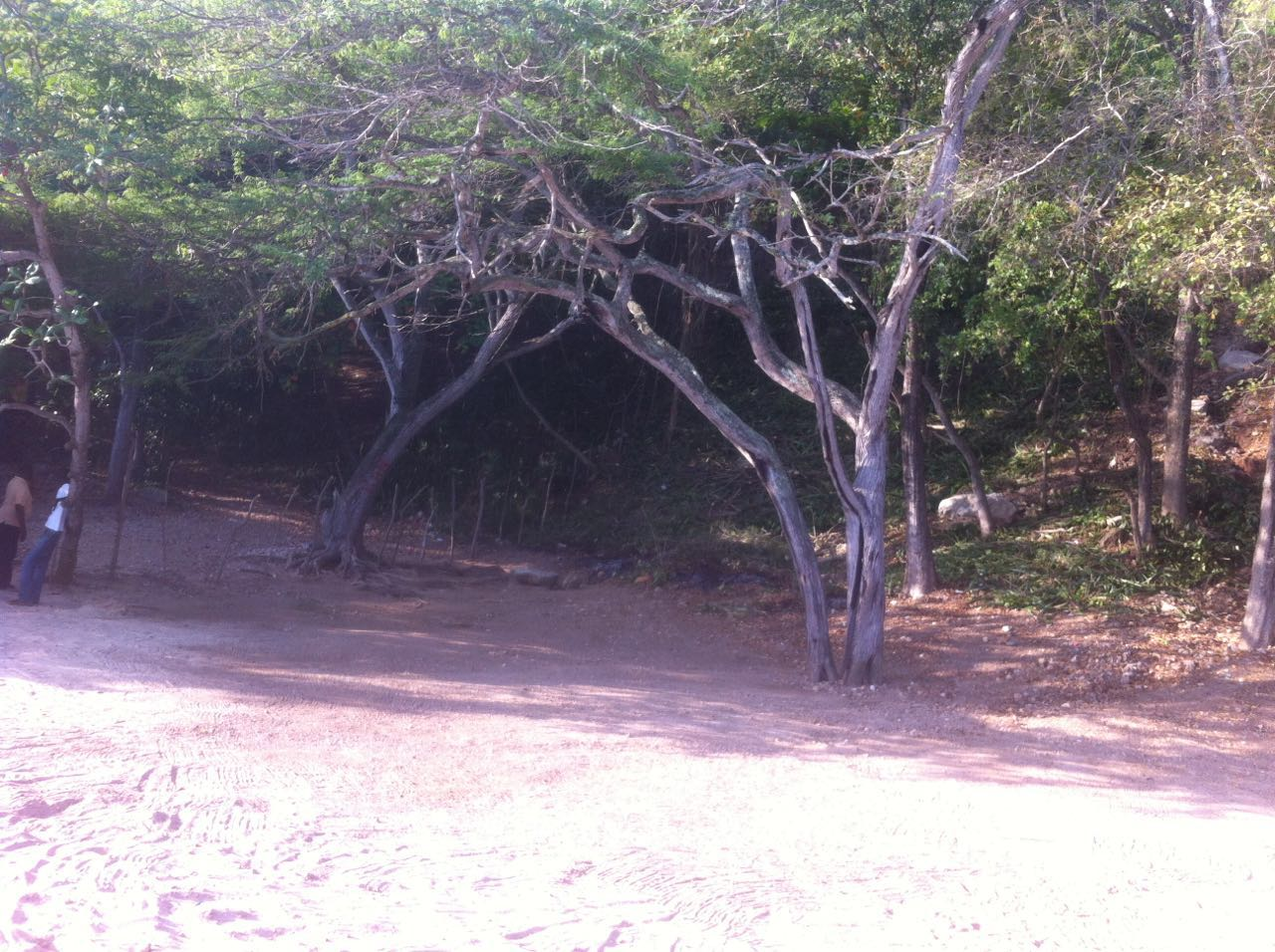 Beachfront Property at Cormier, Cap Haitien