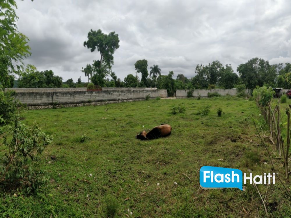 Land Property For Sale in Fond des Negres