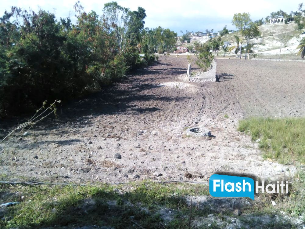 Land For Sale in Les Cayes (Region Simon 16/100)