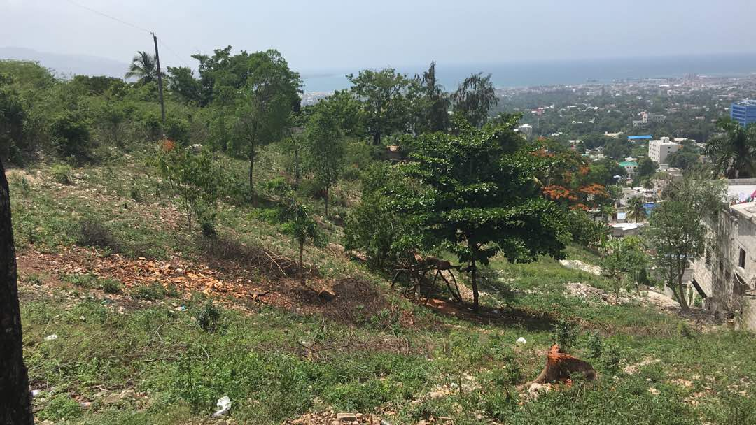 Land For Sale at Canape Vert (7,546 sq m at $50 us /sqm