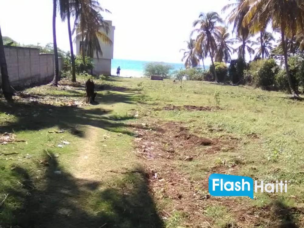 43 Centièmes de Terre à Vendre Cyvadier Jacmel