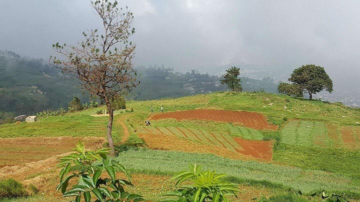 Land For Sale In Belot