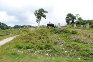 Land lot at Laboule 12 (Piron) - 1,548 m2, (12 centieme)