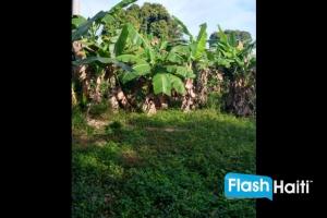 Magnifique Terrain Clôturé a Vendre au Cap-Haitien