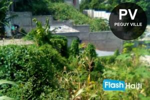 Terrain a Vendre Peguy Ville