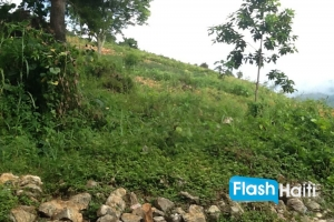 Land for Sale in Haiti