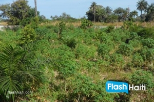 9 Hectares Plot of Land For Sale next to US Embassy Tabarre