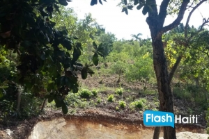 Land for Sale in Marlique, Petion-Ville