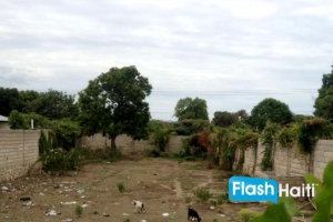 Land For Sale in Gonaives (11,290 sq m2)