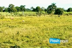Grand terrain (3 careaux) à vendre à Quartier-Morin, Cap-Haïtien